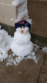Snow pat